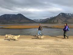 A walk with 4-legged friends (Longyearbyen)