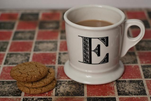 gingersnaps + cookies