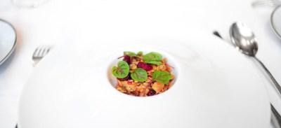 2nd Course: Foie Gras and Cranberry Granola