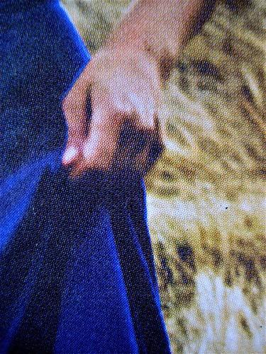 Opendoor, di Iosi Havilio, caravan edizioni 2011; progetto grafico di Flavio Dionisi, ill. di cop. ©DorianGray. copertina (part.), 4