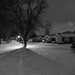 Devoe Drive, January 22, 2012