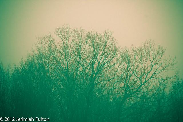 2012_Jan_27_January Fob_009