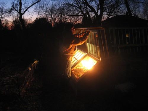 lighted cold frame