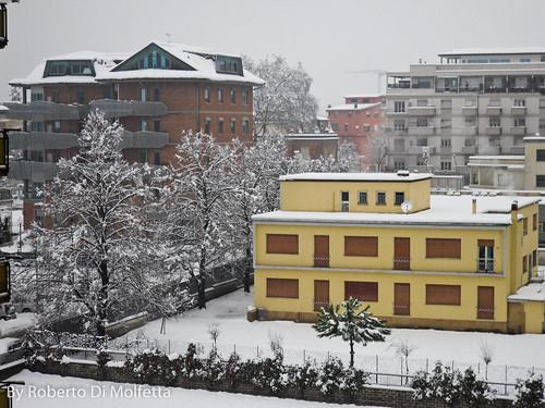 Frosinone - Neve by robertodimo