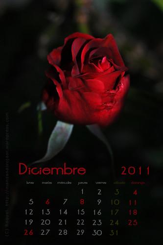 Calendario diciembre 2011