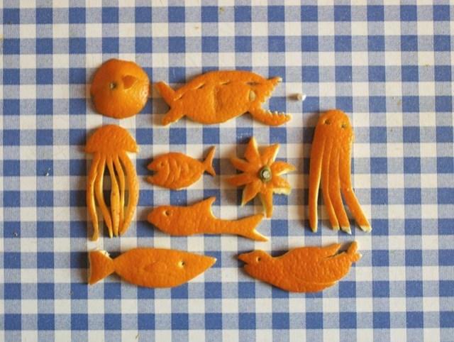 Orangenfisch (2)