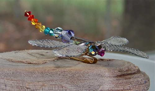 Rainbow Dragonfly Pin by WETCLOUD