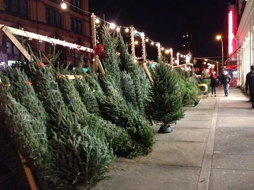 NYC Xmas trees
