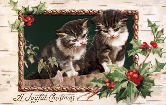 SweetChristmasKittens1