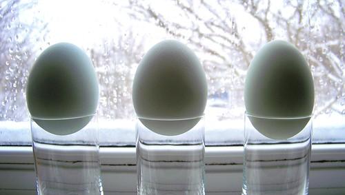 Blue Egg Group