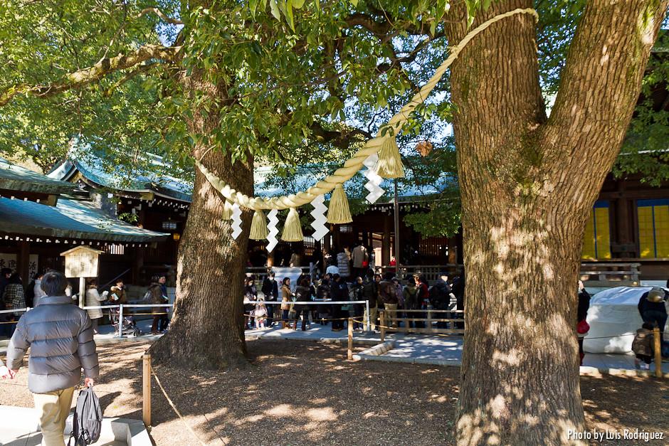 Meiji-Jingu-19