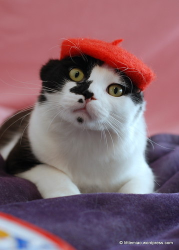 red beret 2-5-2012 3-15-59 PM