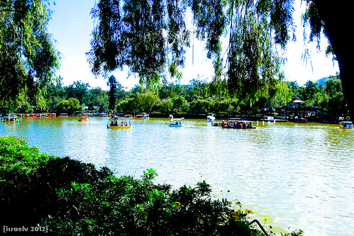 Idyllic Day at Burnham Park by israelv