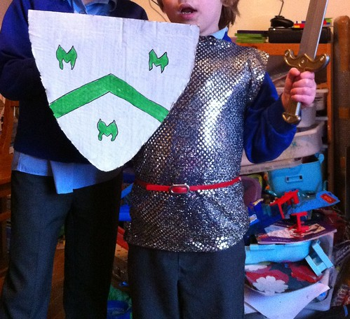 365: 37 knight costume