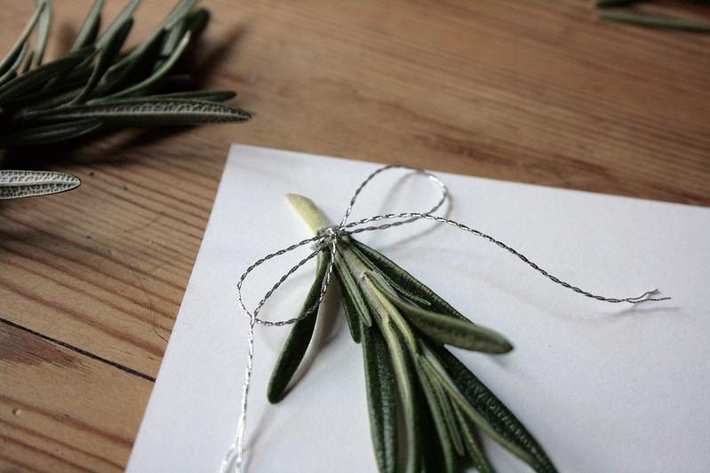 rosemary bow