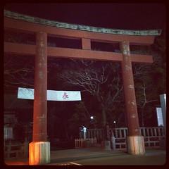 4ヶ月ぶりの静岡