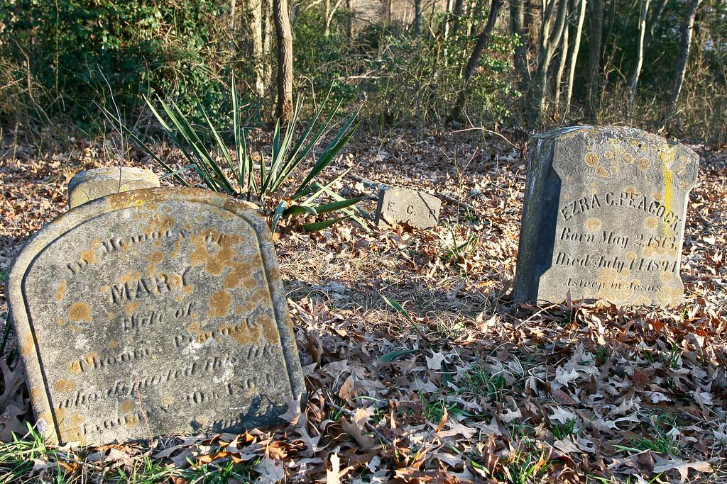 Peacock, Mary, b. 11 Nov 1801, d. 08 Sep 1877 & Peacock, Ezra C., b. 02 May 1813, d. 14 Jul 1894