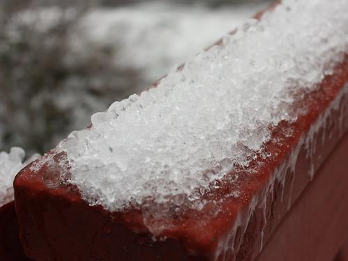 20120121_Ice_Day_031