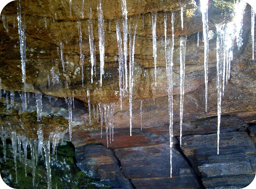 icicles of Harriman State Park, figure D