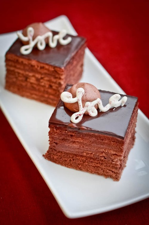 Two pieces of truffle cake recipe on a plate. Great chocolate cake recipe.