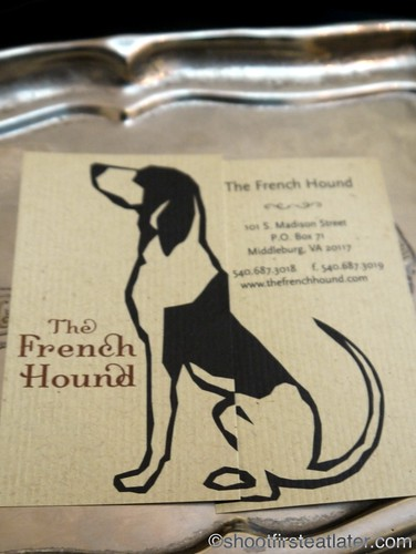 The French Hound-2