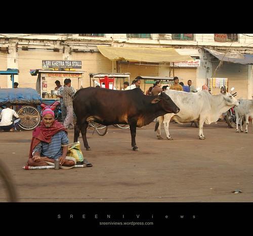 THE DAY BEGINS, Jagannath Temple, Puri, Odisha, India