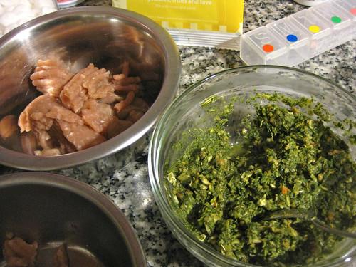 Honest Kitchen Preference + raw turkey