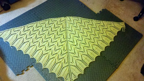 Mrs. Elliot's Shawl