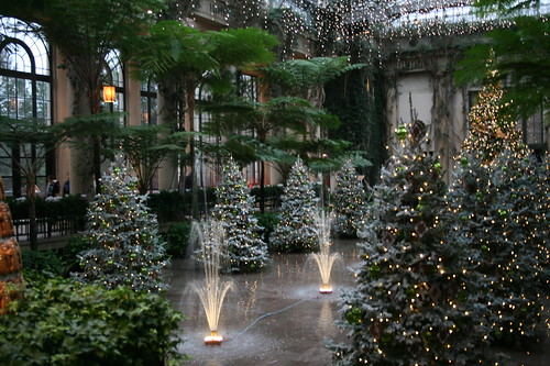 Longwood Christmas trees and fountains
