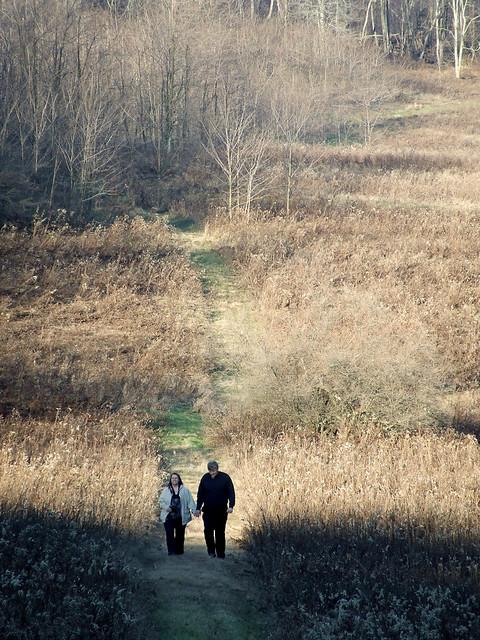 walk in the field