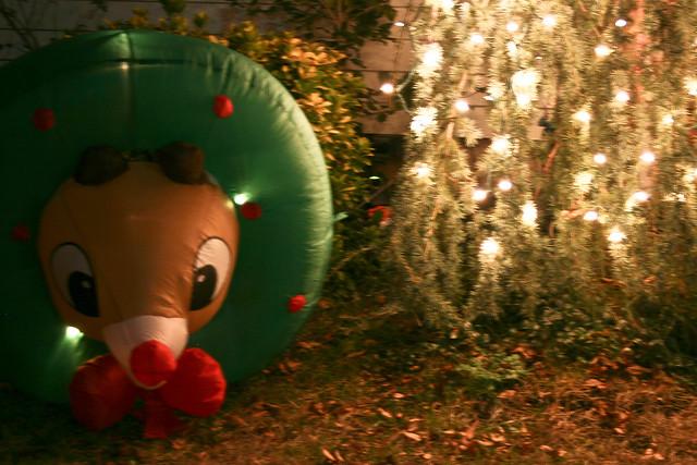 decapitated reindeer