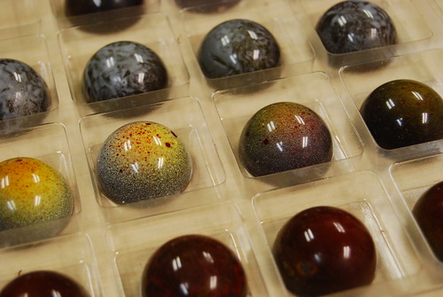 Bacco Chocolates