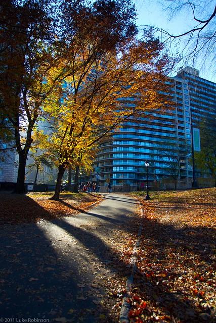 Central Park South - Autumn Colors
