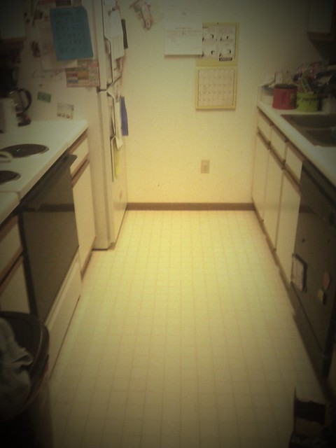 still reaks of bleach and holy fucknuggest, small kitchen!