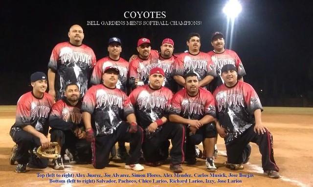 coyotes photo