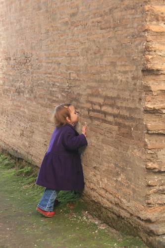 Kissing walls