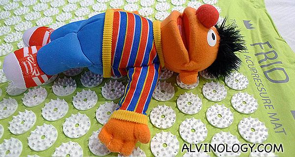 Ernie is enjoying himself on the mat too