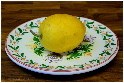 111220 lemon 001