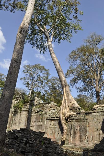 2011-11-24 Siem Reap 52