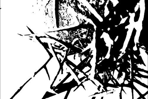 Thorns (Threshold)