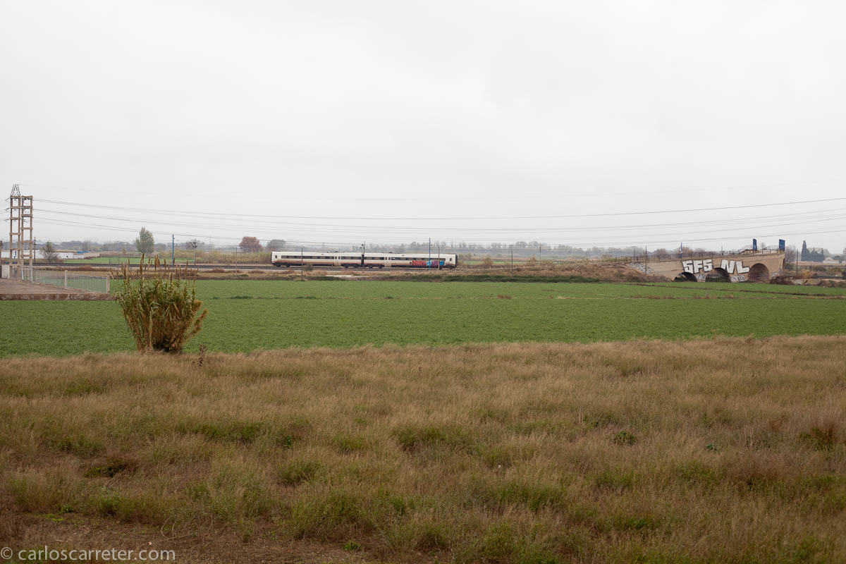 Tren entre huertas