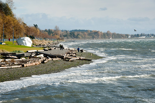 Windy at White Rock