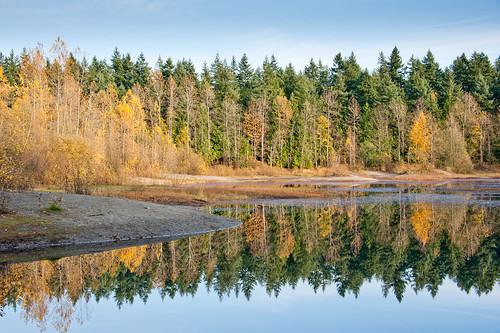 Reflection in Latimer Lake