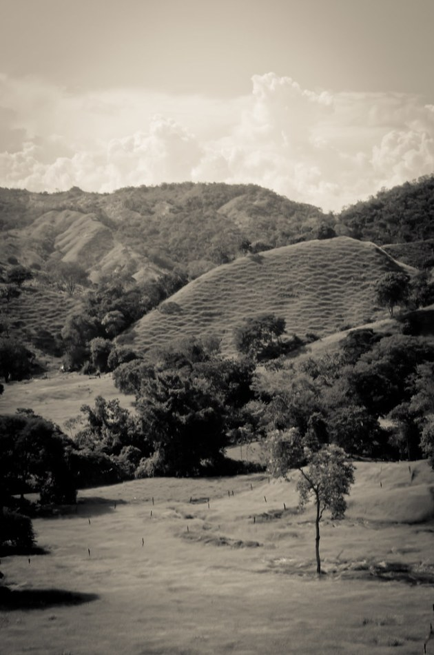 Road to Bogota-4