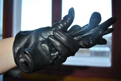 gant 2