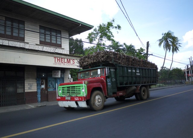 Truck filled with Sugar Cane in Silay City
