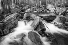 Rausch Creek Cascades