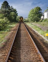 Harlech train
