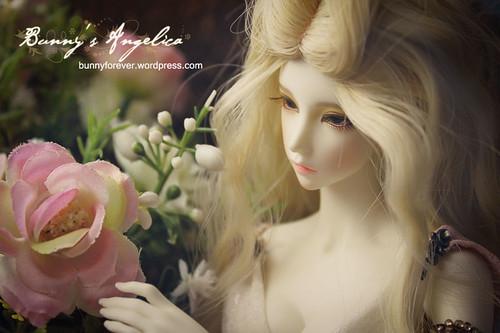 angelica_24112011_02_v1_800