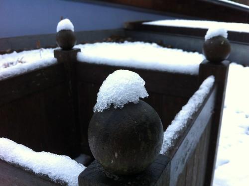 Iced planter